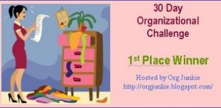 orgchall1stplace
