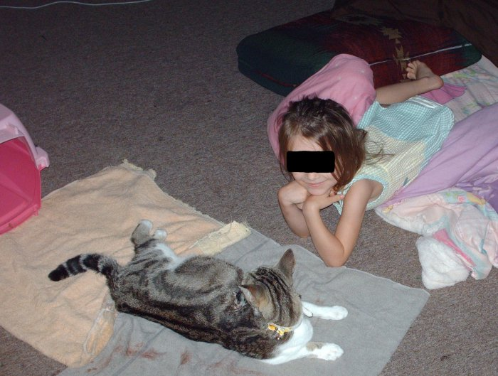 a-blog-kittens1.jpg